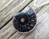 black fossil necklace in sterling silver. mens jewelry. ammonite.