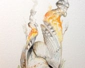 Original Barn Owl and Flames drawing watercolor