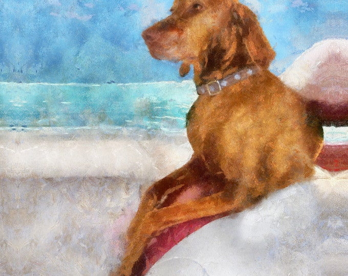 Custom Unique Gift Pet Oil Painting Pet Lover Wall Art Photo Canvas 20x20