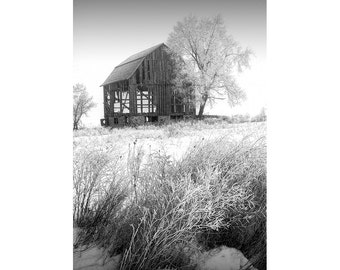 Rural Abandoned Dilapidated Barn in a Winter Morning Hoarfrost in West Michigan No.4731am A Black and White Fine Art Landscape Photograph