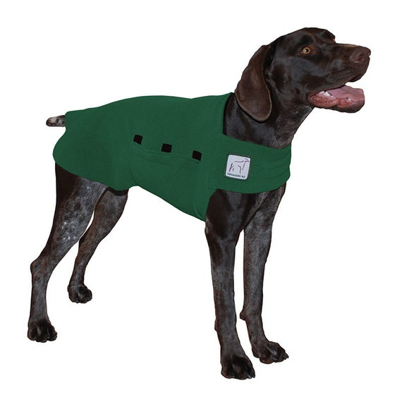 GERMAN SHORTHAIRED POINTER Tummy Warmer Dog Clothing Fleece Dog