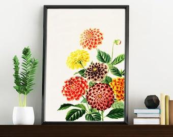 Wall art print Dahlia detail - White paper Spring celebration flowers print Giclee print Home decor gift her. BFL081WA4