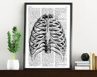 Upcycled Dictionary Page Book Print Vintage Art Print Rib Cage Book page print art dictionary print BPSK066