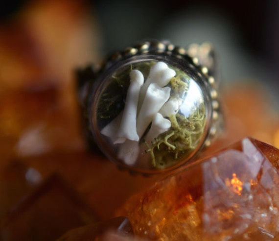 Skunk Toe Bones with Lichen Glass Dome Ring by ladylockscreations
