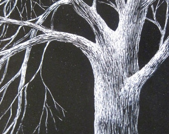 Moonlit Oak: Original scratchbord drawing