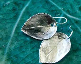 Rose Leaf Earrings in fine silver