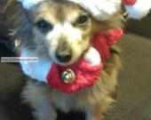 Art, Santa Dog, Santa Art, INSTANT DOWNLOAD NOW, Dog Art, Long Haired Chihuahua-Dachsund Mix, Santa Claus, Christmas Gift,, Chiweenie Art