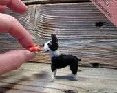 Miniature Needle Felted Boston Terrier, handmade Boston Terrier, Boston Terrier Gifts