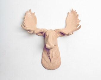 White Faux Taxidermy Mini Moose Head Wall Mount  -The MINI Agatha - Tan Moose Head - Chic 3D Wall Decor & Charming Home Ornaments