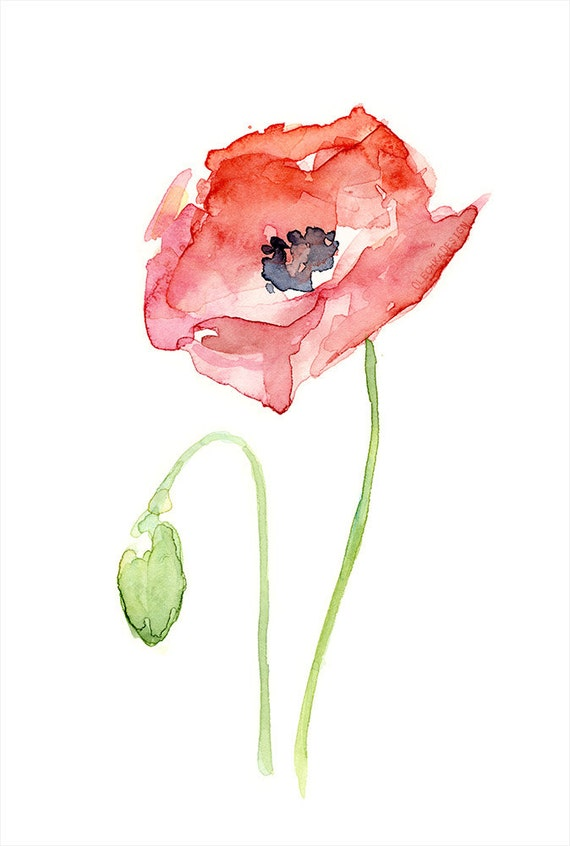 Red Poppy Flower Art Print of Watercolor Painting Plants