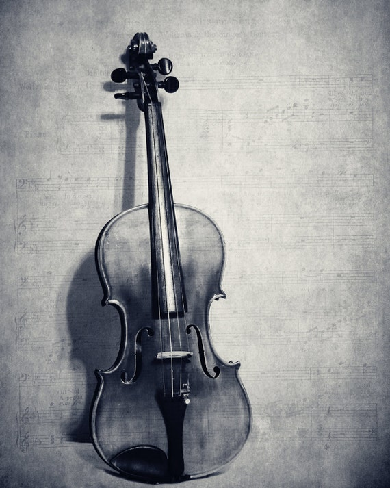 Still Life Violin Fine Art Photography Musical Instrument