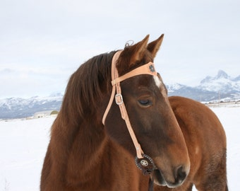 leather horse bridle, leather with tooled flower and basket weave design, western bridle