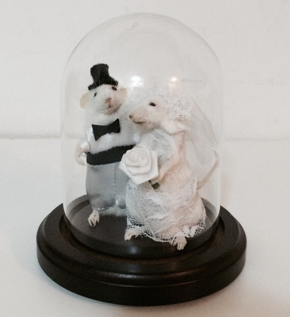taxidermy mouse wedding cake topper taxidermy wedding mouse and groom by 20767