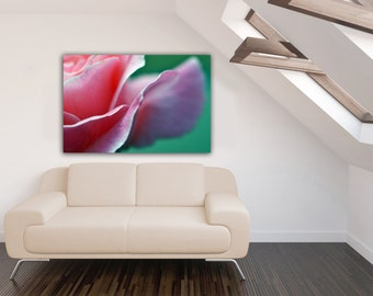 Pink Rose Flower Photograph, Rose Petal Botanical Horizontal Wall Art, Romantic Pink and Teal Floral Photography, Macro Nature Photo Print
