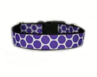 Purple Polka Dot Dog Collar Purple Dog Collar
