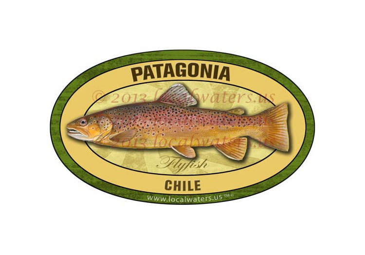 Patagonia chile sticker fly fishing brown trout decal for Patagonia fish sticker