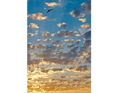 "Birds at Dawn: inspirational encouragement card of flying birds - 5x7"" frameable"