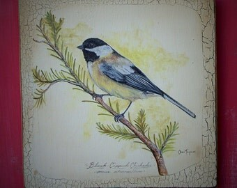 Handpainted Black Capped Chickadee Bird Study Plaque - The Fjell Series