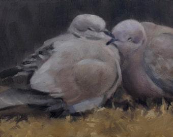 Sleeping birds - pair of birds - lovebirds - oil painting - original art - Pamela Poll