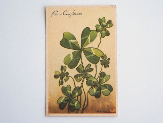 Lucky Happy Birthday Vintage Italian Postcard With By