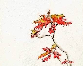 Japanese Maple Bonsai Tree: A Photo Watercolor Art Print Perfect for Your Home or Office