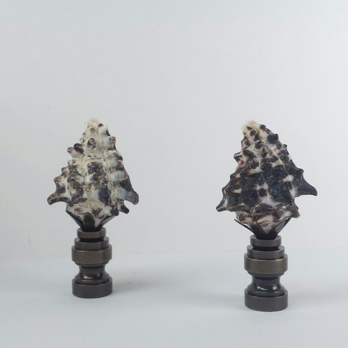lamp finial a pair of real seashell lamp finials by lampfinials. Black Bedroom Furniture Sets. Home Design Ideas