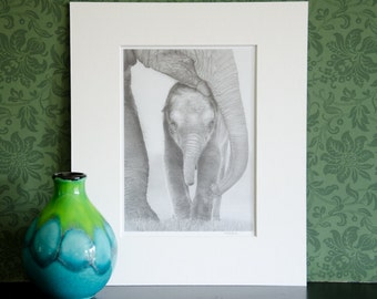 Mother and Baby Elephant - mounted print of original pencil drawing