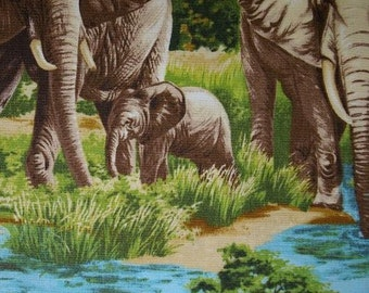 Elephants - Allover Print Fabric