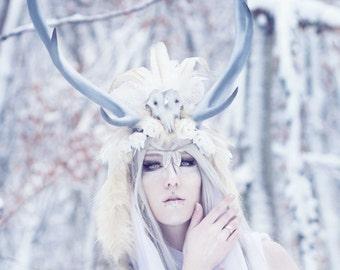 Horns and Headdresses   Printed   DE/EN