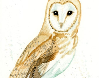 Barn Owl Watercolor Painting Print in sizes 5x7, 8x10, and 11x14