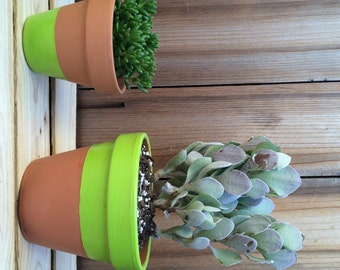 Painted Pots - choose a size and color