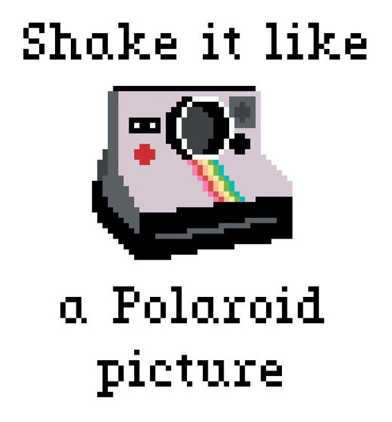 Shake it Like a Polaroid Picture Cross Stitch by ...