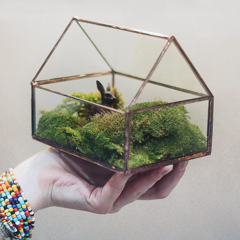 Geometric tinyhouse glass terrarium modern planter for for Indoor gardening glasses