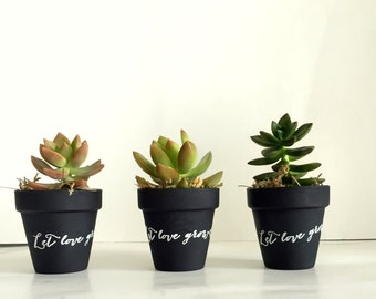 "Set of 25 chalkboard clay pots with let love grow.  DIY Succulent favors clay pots. 2 1/2"" terracota pots. rustic wedding."
