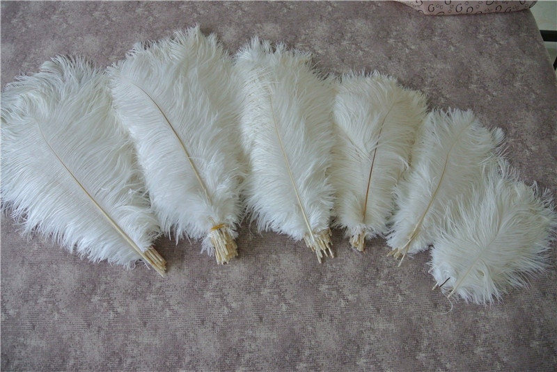 100 pcs white ostrich feather plumes for by wholesalefeather - Suspension plumes blanches ...
