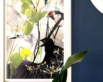 Contemporary Bird Art Print