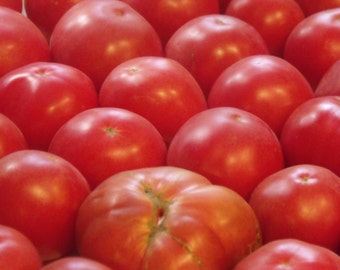 German Johnson Tomato Seeds- Heirloom- 75+ Seeds