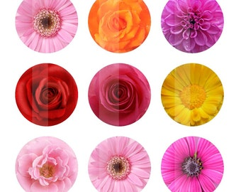 Flowers 4x6 Digital Collage Sheet 1 inch Circles Bottlecap Images