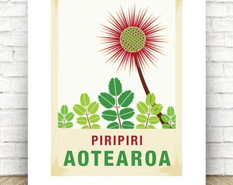 Piripiri illustration.  A3 print – New Zealand native flower series.