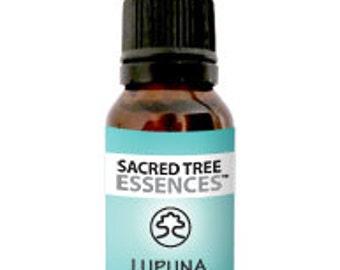 LUPUNA BLANCA ESSENCE - Amazonian Shamanic Sacred master plant remedy - Handmade by a Master Shaman in the Peruvian Jungle.