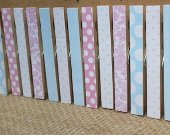 """Pink Blue Clothespins / Clothespin Clips in """"Precious One"""" / Set of 13 / Baby Shower Clothespins / Decorative Clothespins"""