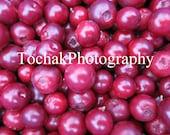 Digital Photography from Alaska! Digital Download Photo of Cranberries from ALASKA!!