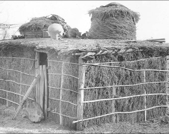 24x36 Poster; Native Yuma Indian Dwelling, Ca.1900 (3532) #031215