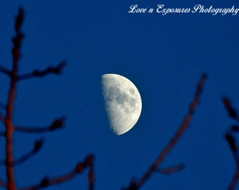 Branched Out Moon (Landscape, Nature, Moon, Fine Art Photography)