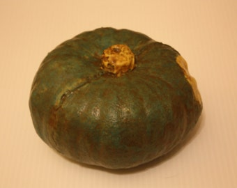 Throwing buttercup squash