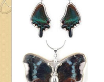 Beautiful Real Butterfly Necklace and Earrings set
