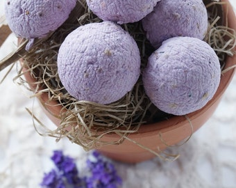Sale Free Shipping Unique Favors 50 Plantable Wildflower Seed Caps Boho Rustic Garden Wedding Shower Purple Favors Seed Bombs Gifts