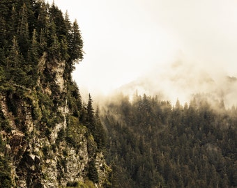 Alaska Landscape Photography, Kenai Fjord Alaska, Faded, Pine Trees, Cliffs, Fine Art Photography, Alaska, Lands End