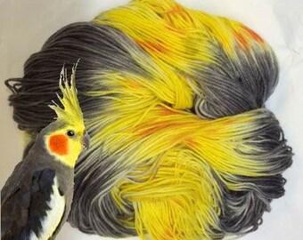 Hand Dyed Sock Yarn - Phlip, the Bird