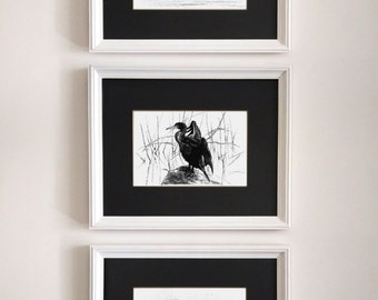 Wall decor art prints. Set of three black&white drawings of birds. Ink pen drawing.